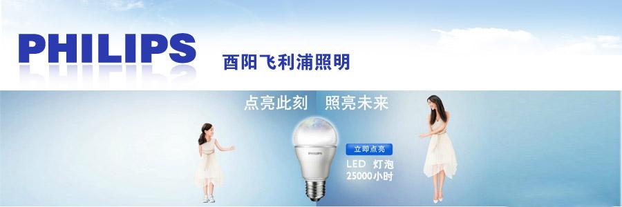 飞利浦照明_飞利浦照明logo   飞利浦照明看重生态圈合作 高清图片