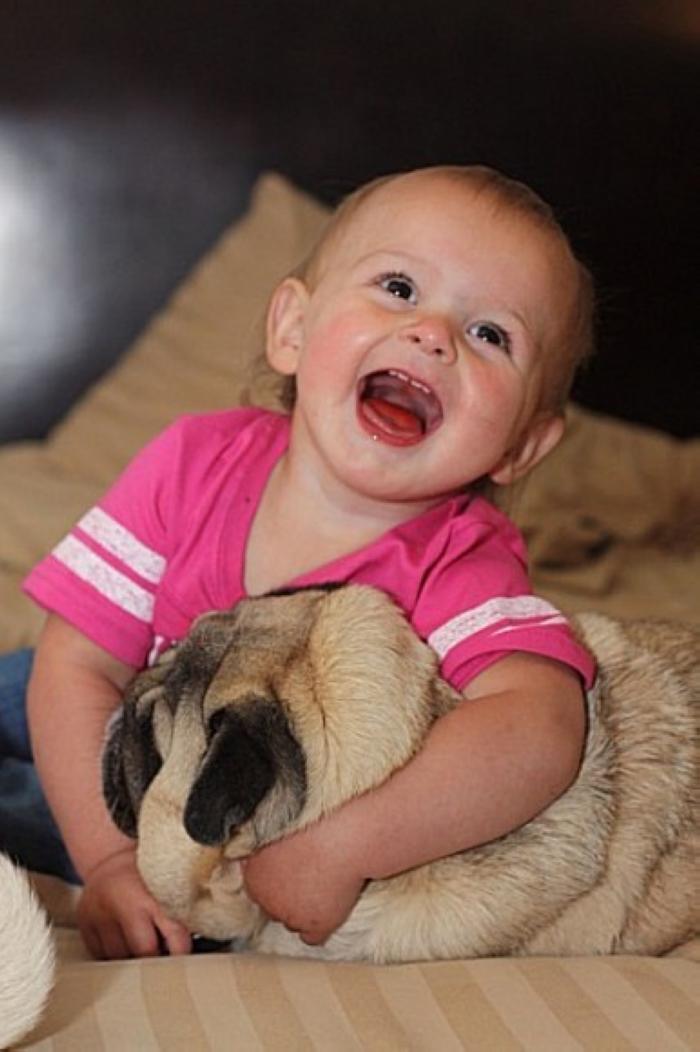 可爱的狗狗遇到活泼的小孩