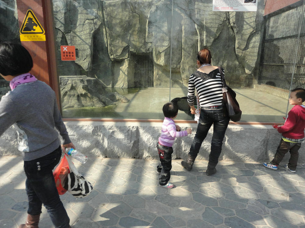 南昌动物园论坛图片_武宁论坛