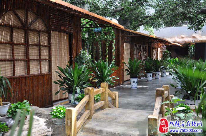 阳光生态园酒店绿色家园的古朴木屋