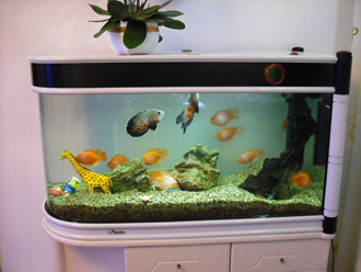 海水鱼缸底缸设计图;