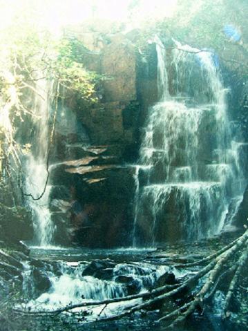 惠东古田自然保护区_惠州旅游景点