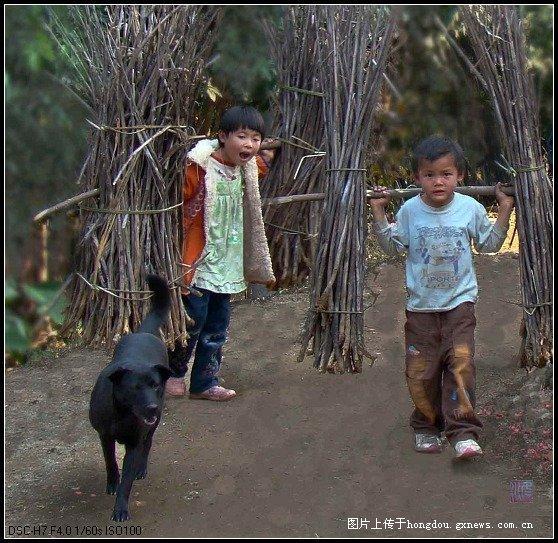 农村孩子的童年是我最美好的回忆