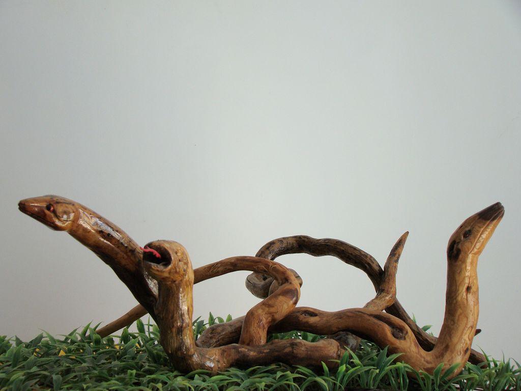 榆树瘤更是坚硬无比,浑身长满了木刺,花纹特别独特,是制作天然根雕的