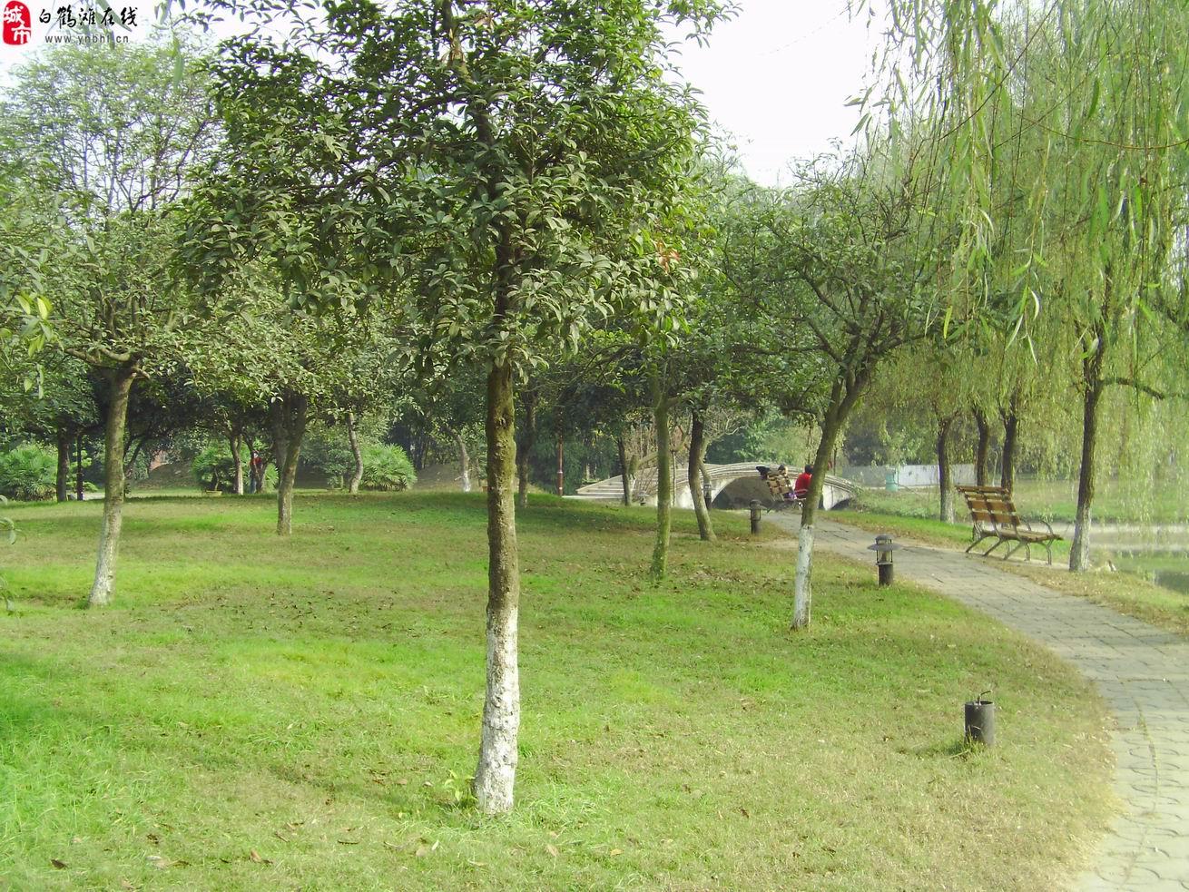 巧家白鹤滩公园