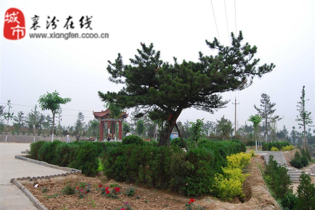 南贾镇地图