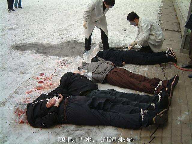 中国 邓丽君/登录/注册后可查看大图