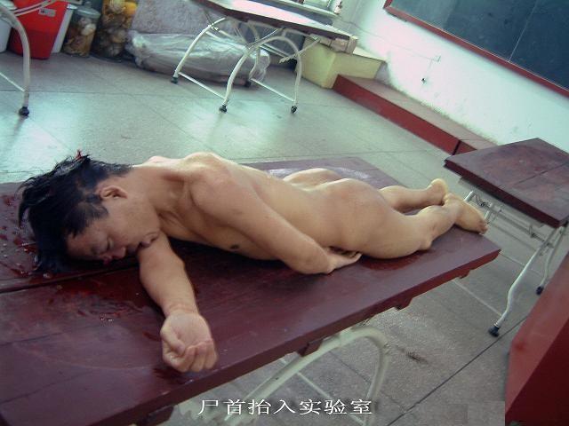 中国 尸体/登录/注册后可查看大图