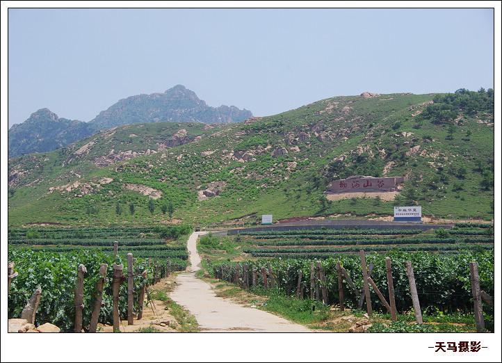 我的家乡柳河山谷图片