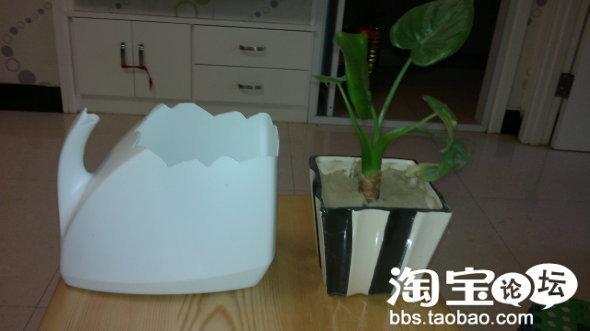 [分享]省钱家居 变废为宝 家庭装洗衣液瓶改装成花瓶