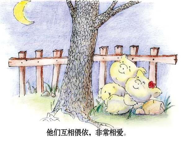 两只小猪的爱情故事_我拍我秀