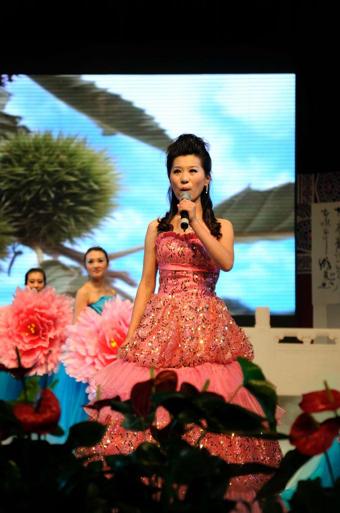 第三个节目歌舞《首阳是个好地方》 编导:李丽 演唱:孙一雪
