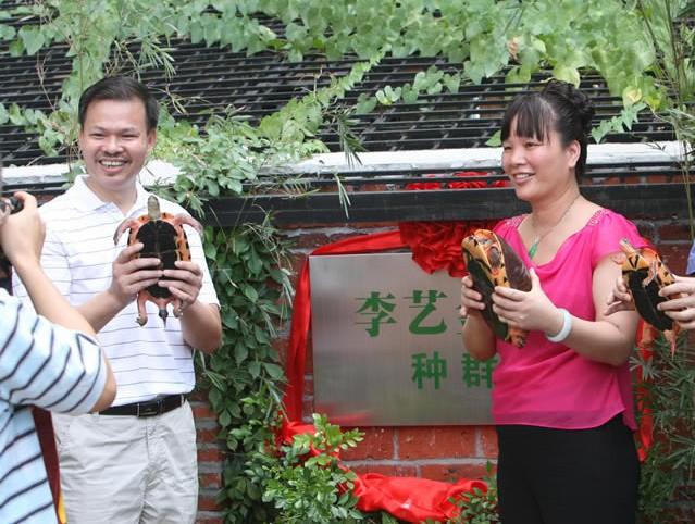 李艺金钱龟生态养殖场[博罗县]_旅游景点_惠州在线