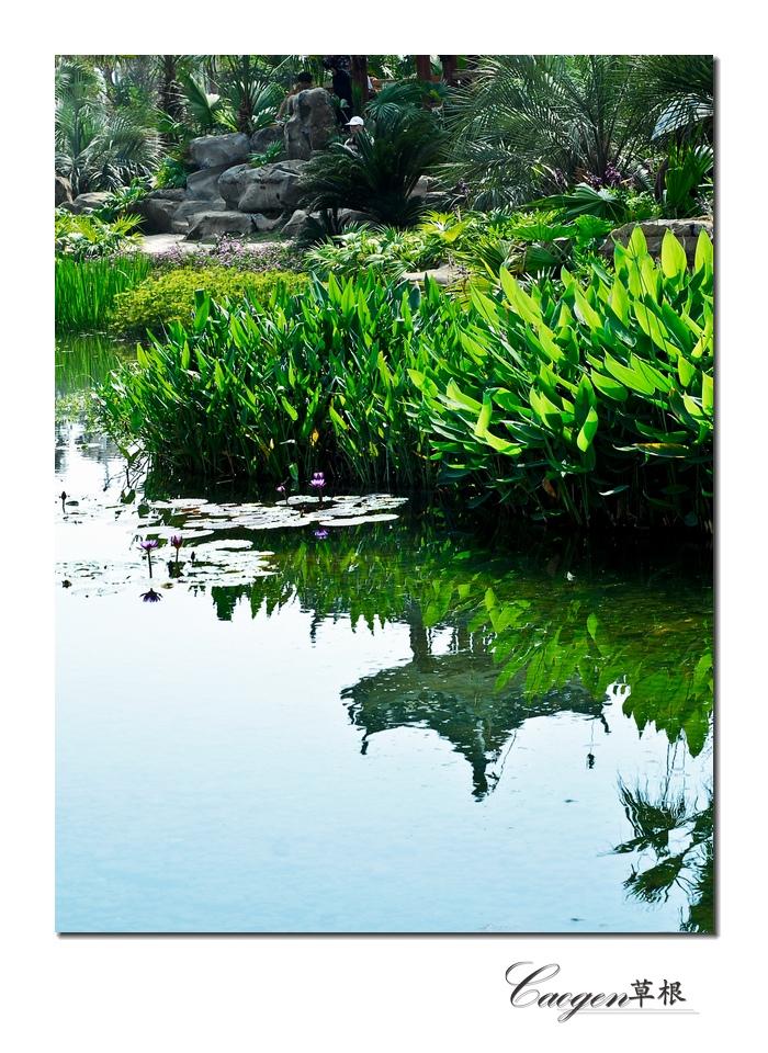 [原创]柳州园博园拍景