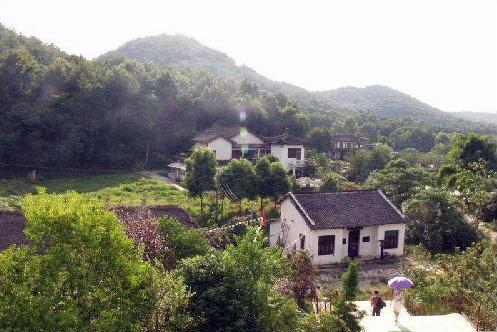 青龙山森林公园_旅游景点_江夏热线