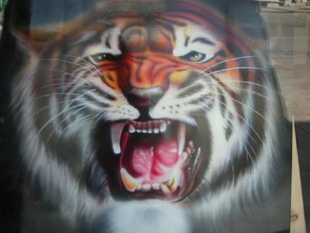 彩绘可爱老虎头像