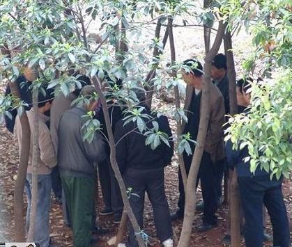 龌龊!小树林里上演的不堪一幕-10元摸一次失足妇女 农民工与妇女肮