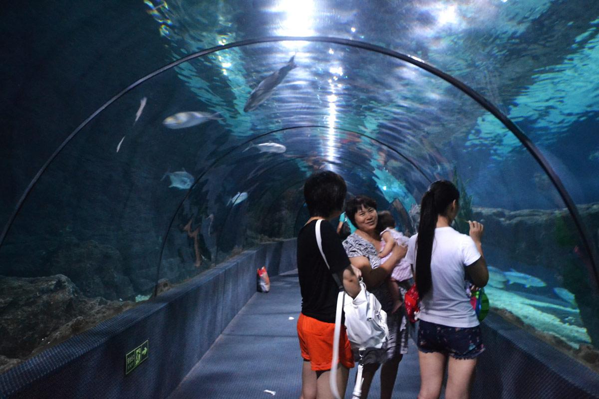 [原创]郑州海洋馆之《海底隧道》