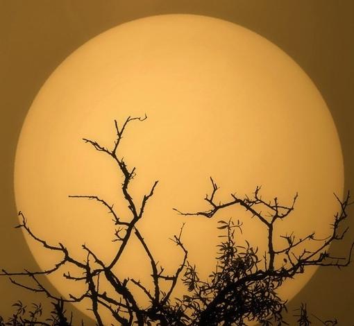 中秋月亮   中秋的月亮真美   flash中秋节月亮诗词动画