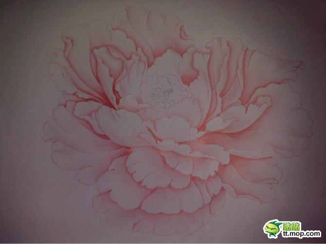 铅笔画画牡丹的图片