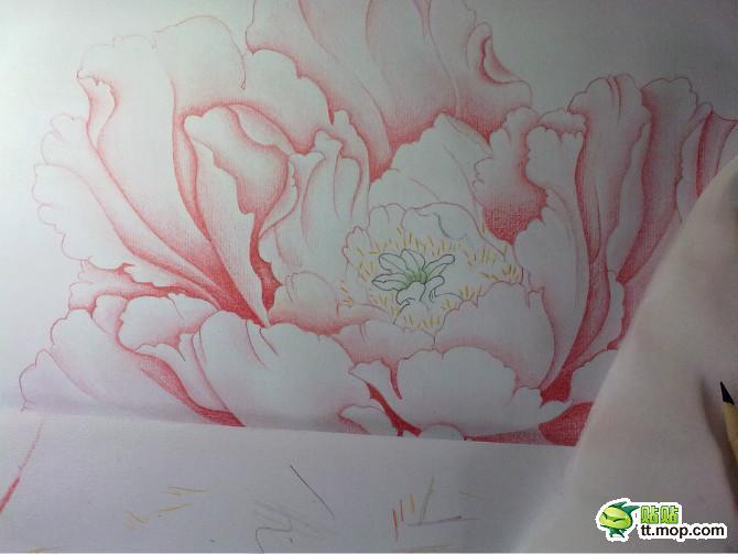 牡丹花铅笔画写生