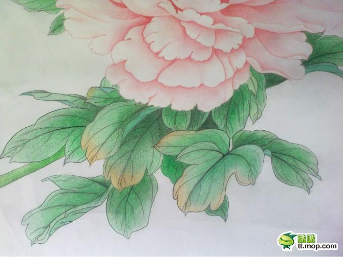 小孩画春天的彩笔画展示