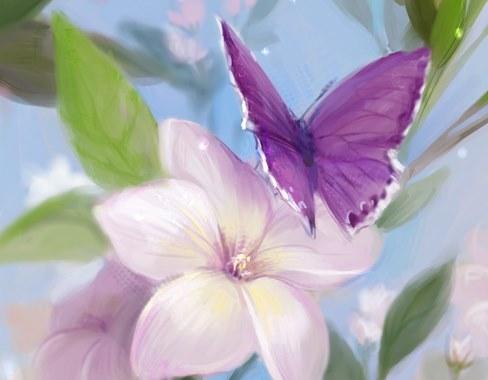 每一只蝴蝶