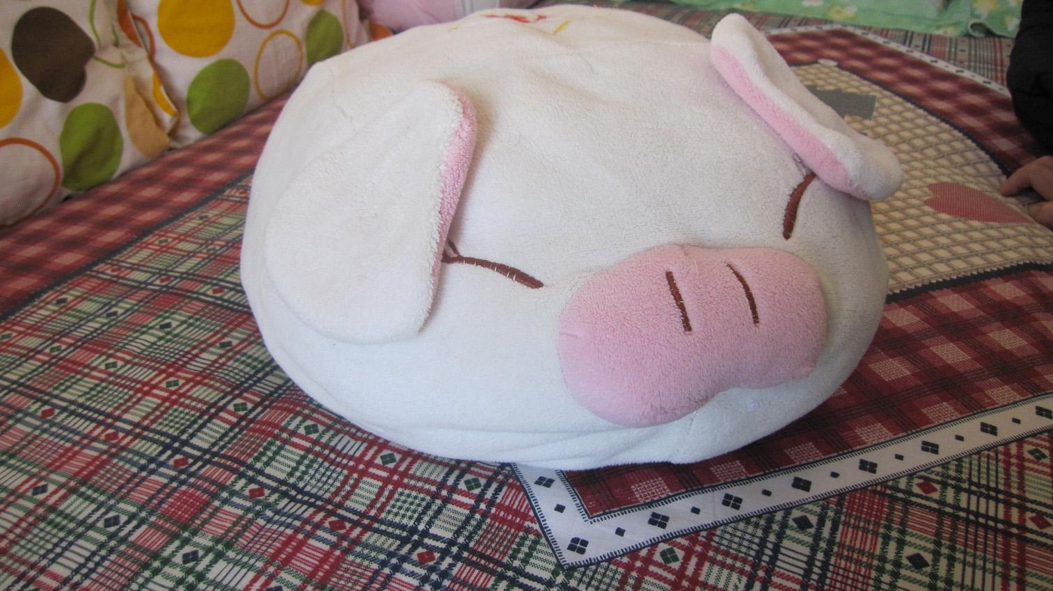 可爱的小懒猪_影友园地