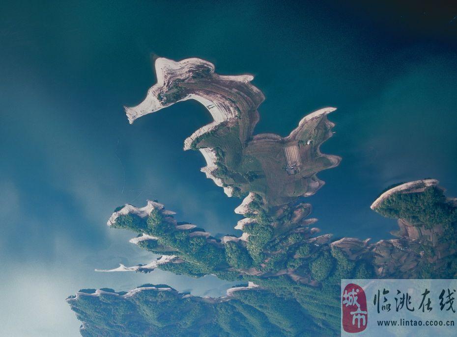 从十二生肖和动物学的角度来看,只有龙没有实体.