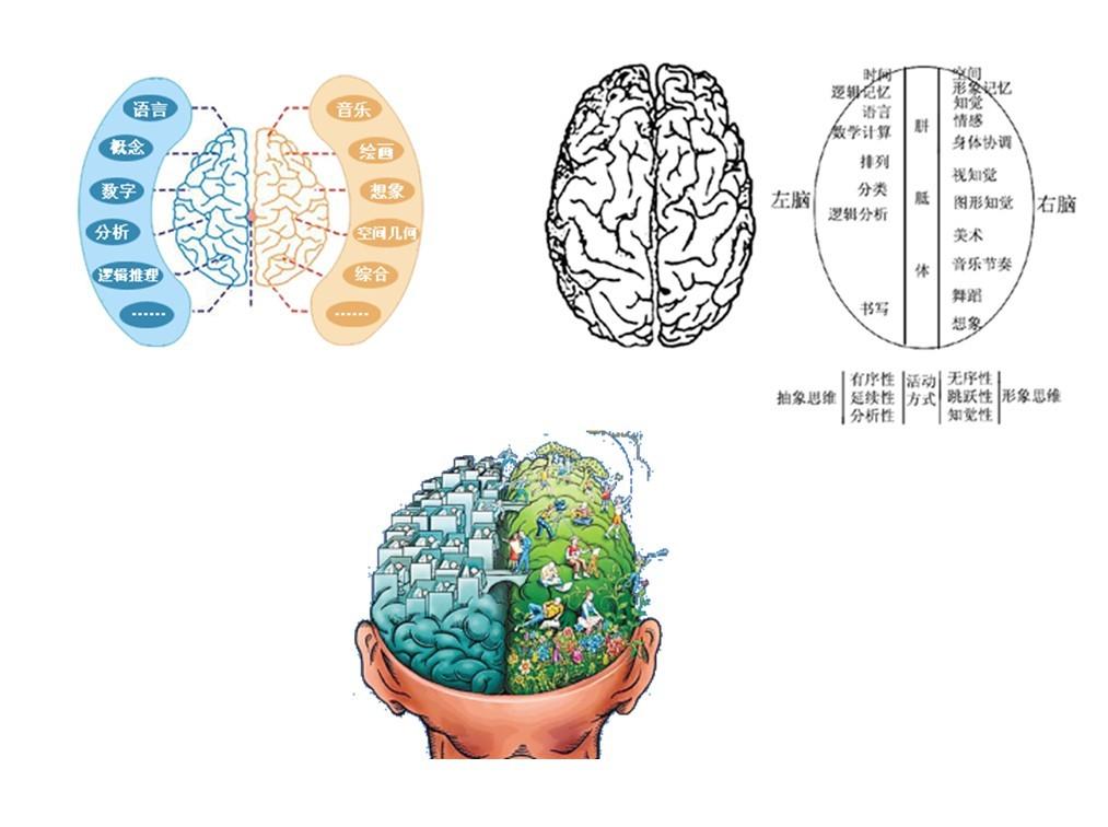 左右脑-开发幼儿右脑五种方法
