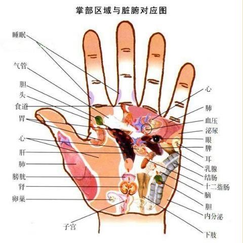 手掌8字包扎方法图解