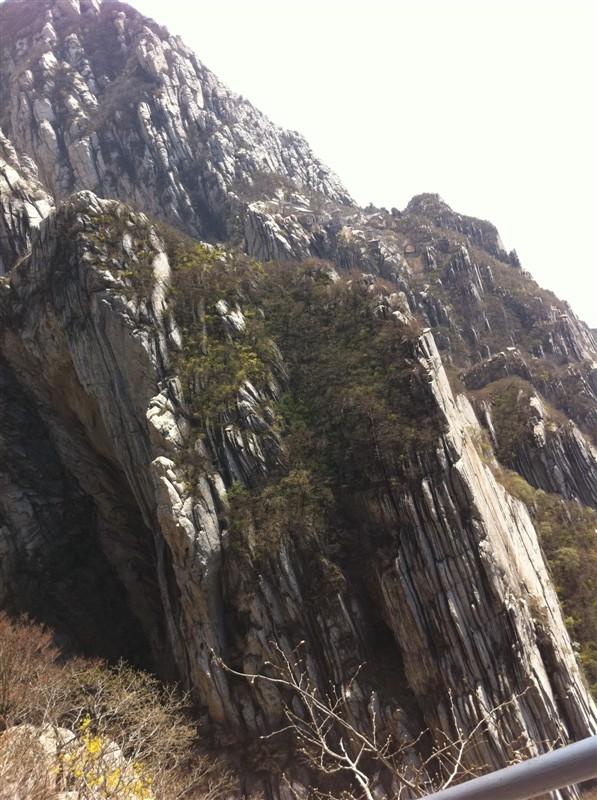 嵩山有悬崖峭壁,怪石林立,有少林寺的塔林,有石碑