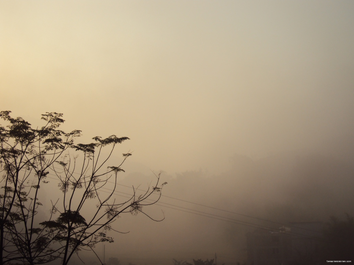 实拍藤县乡村雾景,适合制作《雾》课件图片素材