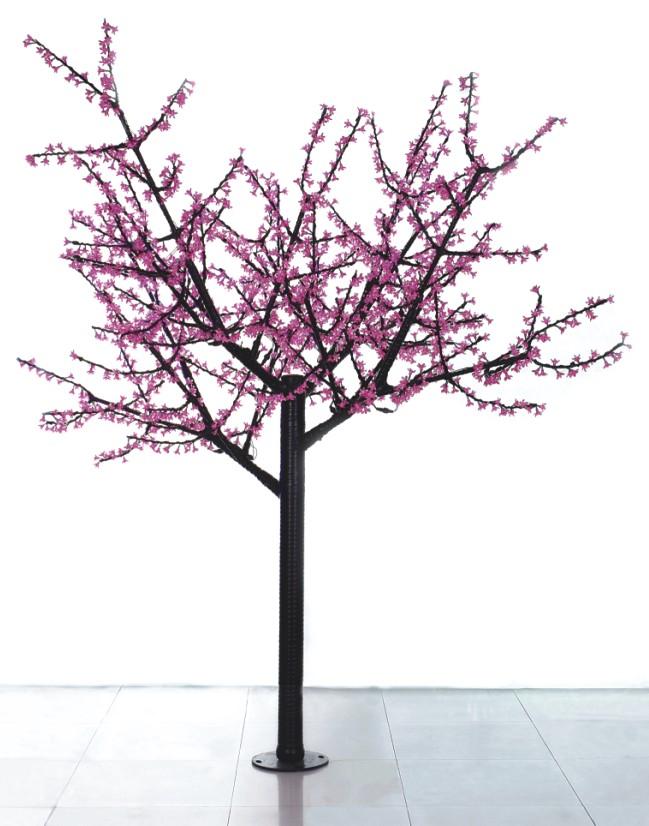 樱花树唯美图片樱花树素材樱花树简笔画