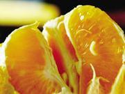 多地出现带蛆柑橘 农业部要求及时公开测控结果