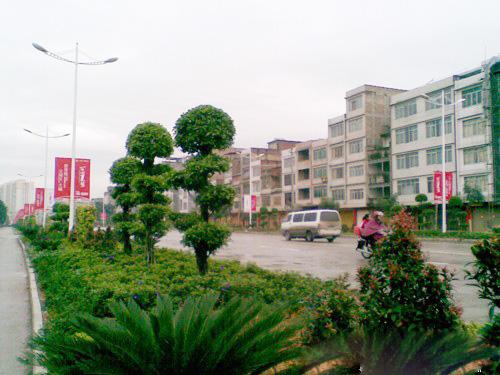 北流市把创建国家园林城市作为统筹城乡发展的一个重要载体.