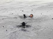 大连两名清理油污战士坠海 1人遇难