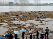 吉林松花江沿岸地区采取措施拦截化工原料桶