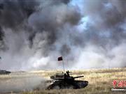"""""""和平使命-2010""""中方部队展示陆军先进武器装备"""
