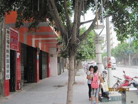 榕江县福卡斯外国语学校寒假开设小学、初中、高中各科培训班