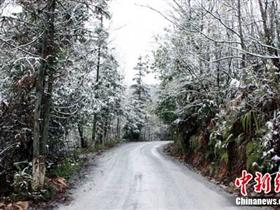 降罕见春雪出现在广西百色市境内多县