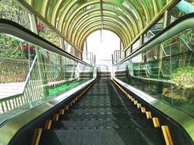 江苏无锡动物园电梯骤停61人受伤