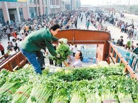 西安向市民免费发放蔬菜 现场排队达400米/图