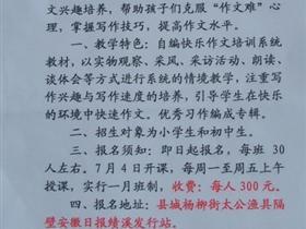 安徽报业集团绩溪发行站举办暑期小记者作文培训班