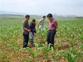 县农业综合执法大队调解处理一起农资纠纷