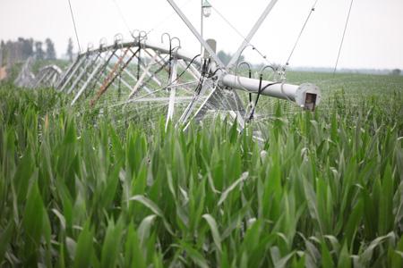 加快农村产业结构调整升级