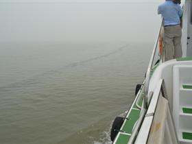 天津蔡家堡海域发现不明油污带绵延5海里(图)