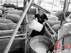 惠州:生猪养殖业呈现