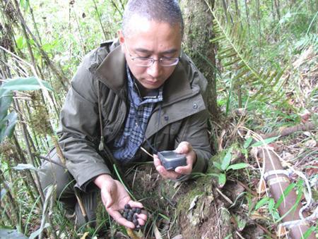 景东保护局继续加强对保护区内野生动物监测工作