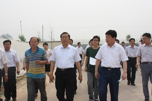 聊城市委副书记王忠林来莘县燕塔街道肖屯村进行调研